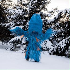 Meryl McMaster, Wind Play, 2012, courtesy of Katzman Contemporary