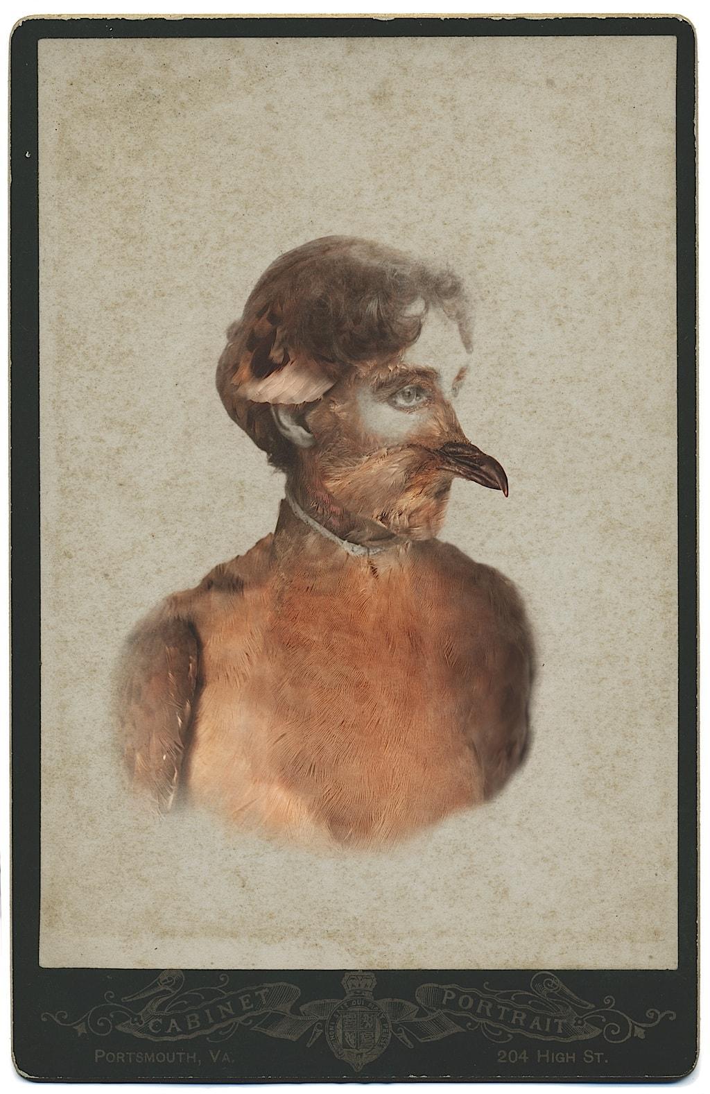 5.Female Passenger Pigeon- Sara Angelucci-reduced